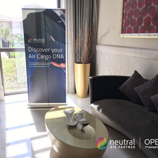 http://openap.neutralairpartner.com/wp-content/uploads/2016/10/Cocktail-reception-3-540x540.jpg