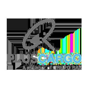 https://openap.neutralairpartner.com/wp-content/uploads/2021/06/pluscargo.png